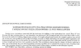 Schyłkowopaleolityczna pracowania krzemieniarska z miejscowości Ślęża (Stanowisko 12) pod Wrocławiem, Jarosław Bronowicki, Dariusz Bobak