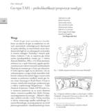 Gry typu TAFL – próba klasyfikacji i propozycje zasad gry,  Muzeum Archeologiczno-Historyczne w Elblągu